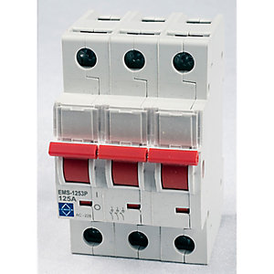 Lewden EMS-1253P 125A 3P Main Switch