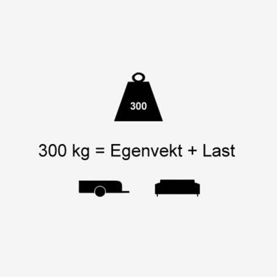 Info egenvekt for elbilen KONA Electric. Illustrasjon.