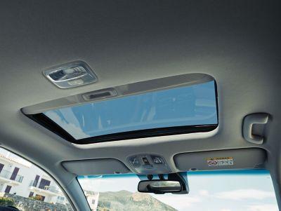 Vista en detalle del botón eCall del Hyundai IONIQ Híbrido.