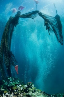 Ghost nets, abandoned fishing nets being floated to the surface of the sea to be recycled.