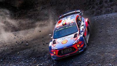 Immagine di Hyundai i20 WRC che corre su uno sterrato