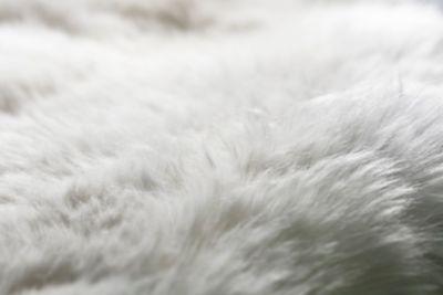 Ogni crossover 100% elettrico Hyundai IONIQ 5 contiene 294 g di lana