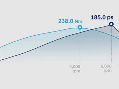 Gráfico del rendimiento del motor del Hyundai SANTA FE.