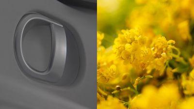 Su plancia e pannelli porta viene utilizzata una bio-vernice, prodotta con olio estratto dal mais e dai fiori di colza
