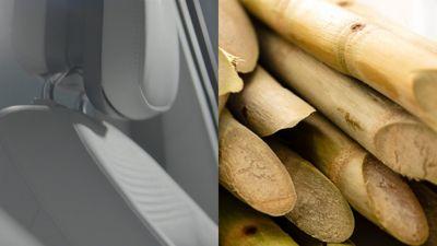 Per IONIQ 5 Hyundai usa componenti bio e sostenibili estratti dalla canna da zucchero e dal mais
