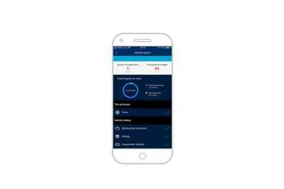 Screenshot dell'app Hyundai Bluelink su uno smartphone: diagnostica auto
