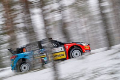 The Hyundai i20 R5 going uphill in the woods.