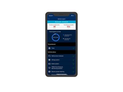 Screenshot di app Bluelink su iPhone: informazioni sulla salute dell'auto.