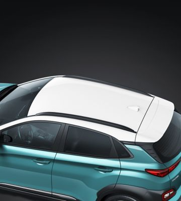 The roof rails on the all-new Hyundai Kona Electric.