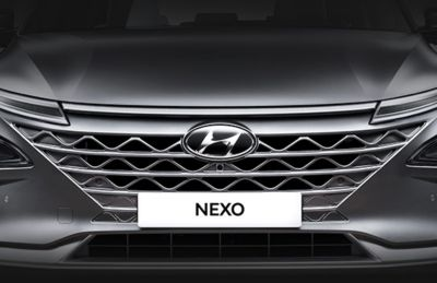 Imagen de los tiradores automáticos del Hyundai NEXO.