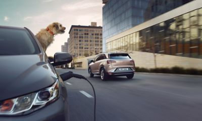 A dog looking out of the window of a parked car as an all-new Hyundai Nexo drives past.