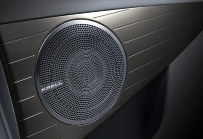 Photo showing a speaker of the KRELL premium sound system.