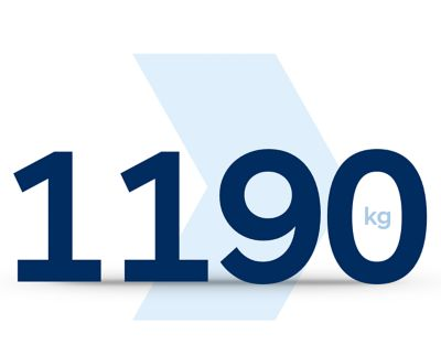 1190 kg ikonka