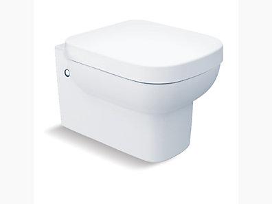 Toilet Type Wall Hung Toilets Kohler