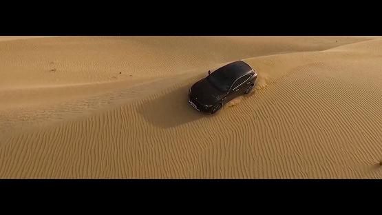Dubai Levante Experience