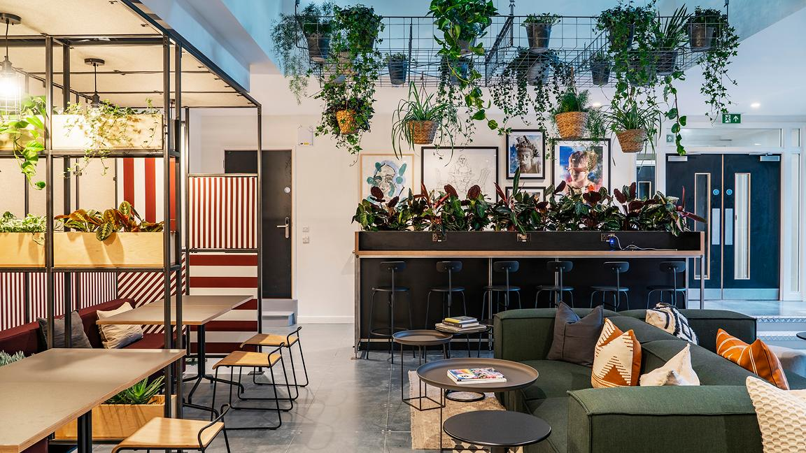 Flexible workspace interior with sofas, desks, and plants that are hanging from the ceiling