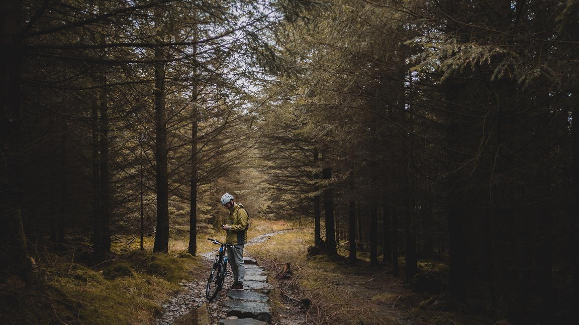 Biking in Grizedale forest, Ambleside, UK