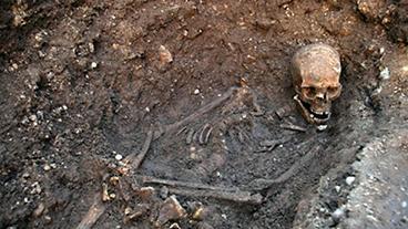 Buried deep: nine of the strangest building site finds