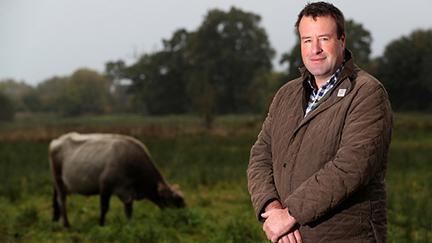 How councils can help farmers reach net zero