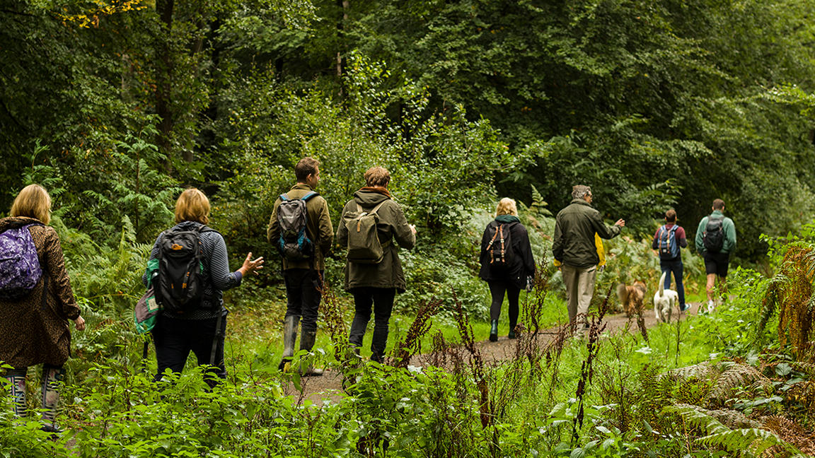 Group of people walking behind each other through woodland