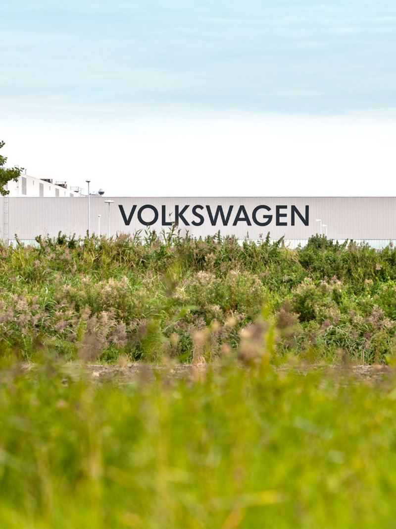 Green landscape with Volkswagen banner