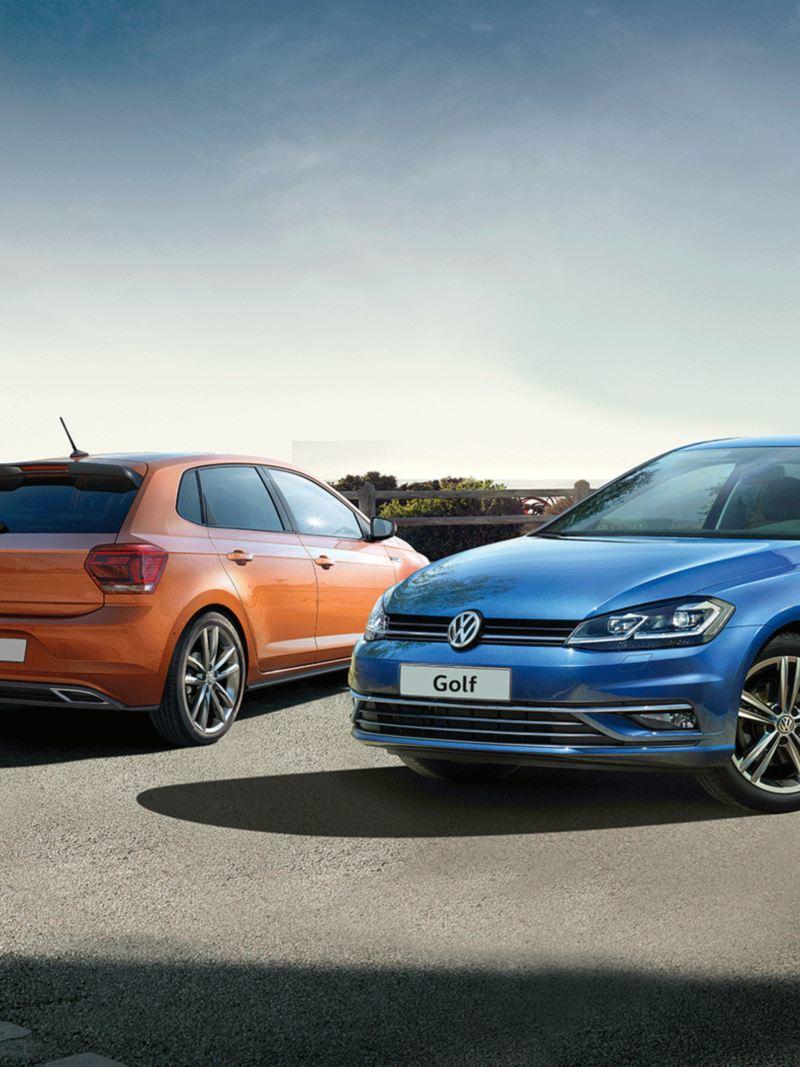 Volkswagen Tüm Modelleri