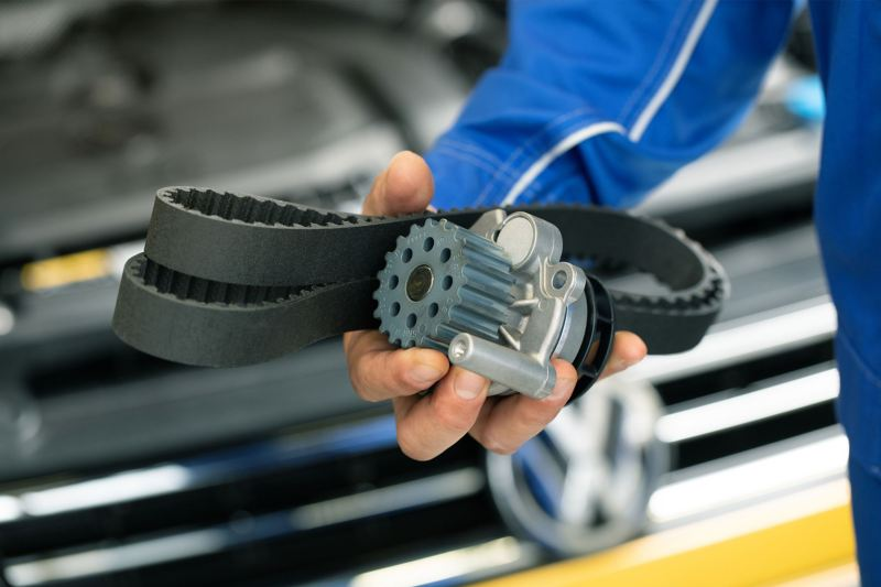 Cinghia trasmissione Volkswagen