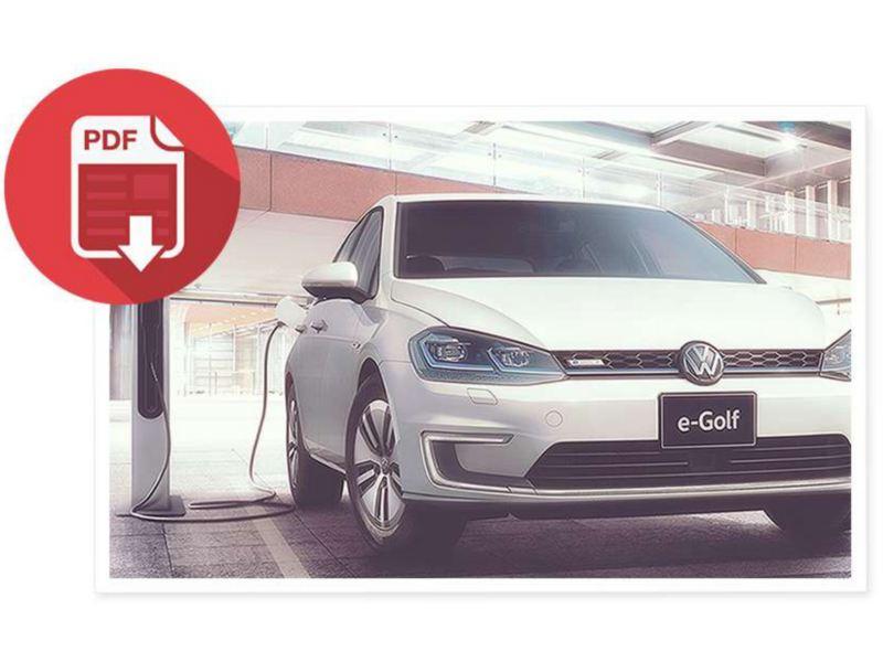 電気自動車(e-Golf)向けプログラム