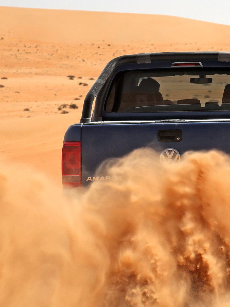 Amarok i sand