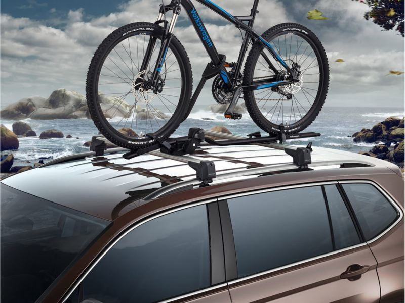 Bicycle holder