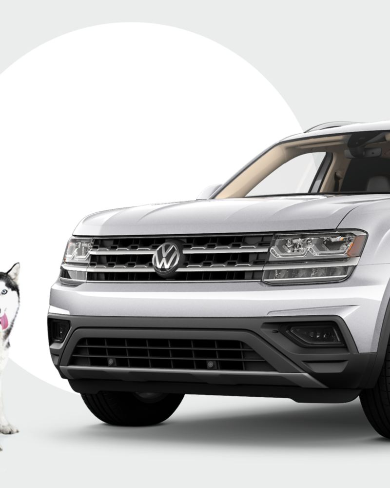Become the loving new owner of an adopted VW