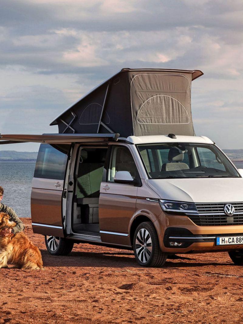 Un uomo in spiaggia con il suo cane, vicino un VW California.