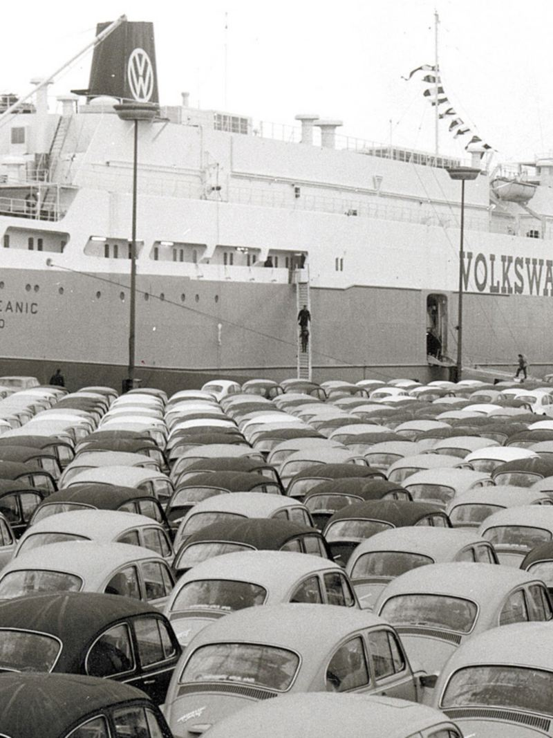 esportazione auto Maggiolino volkswagen