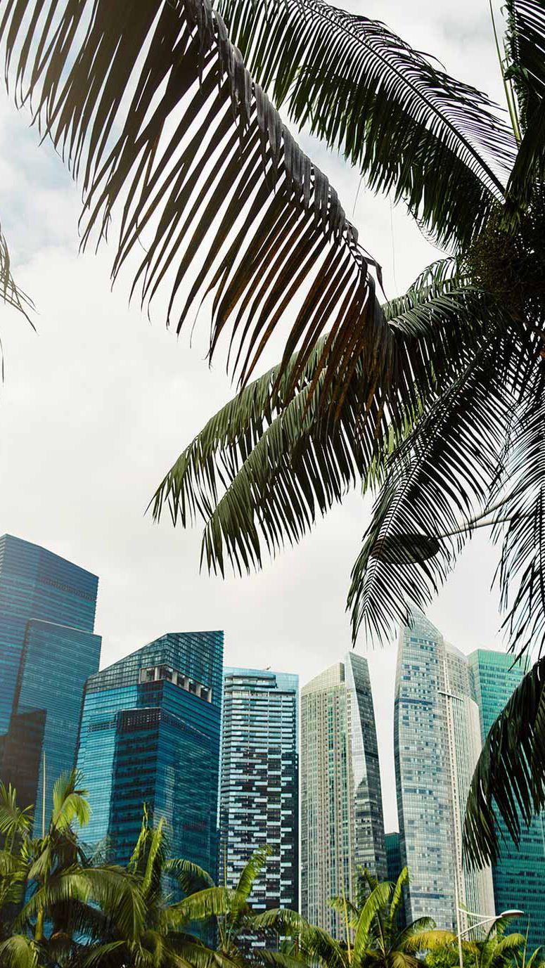 Grattacieli in contesto urbano