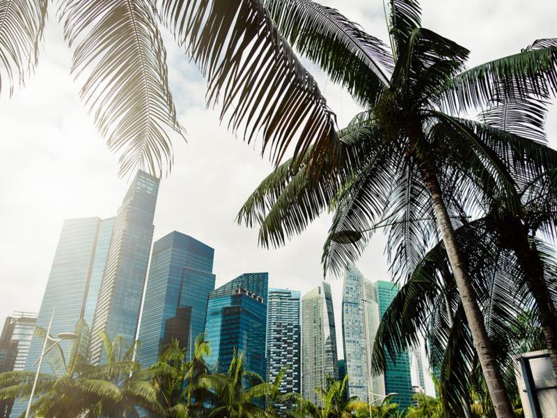Elektromobilität in Megacity Singapur