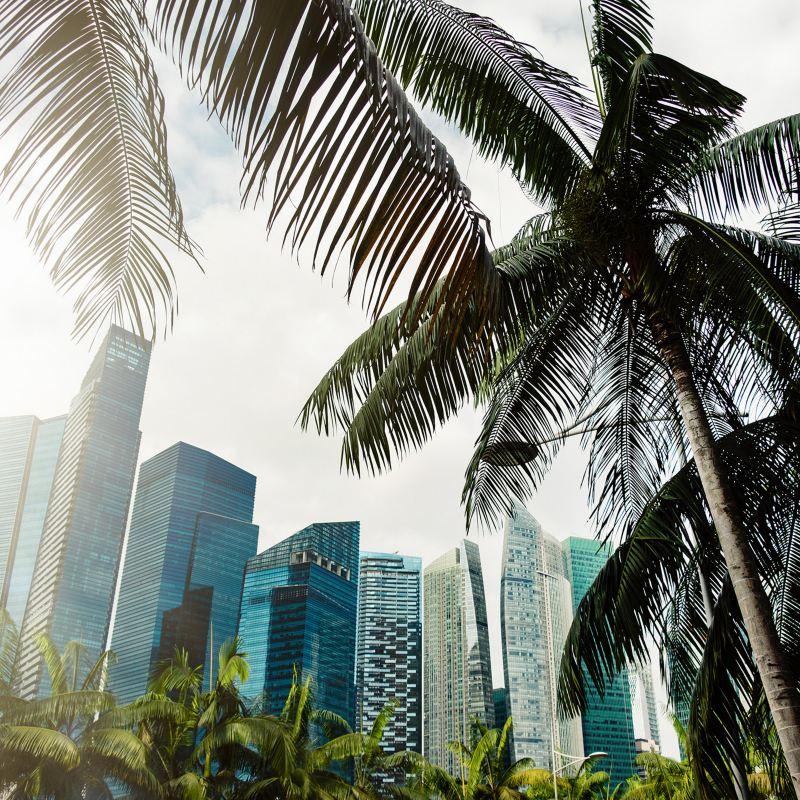 Elektromobilität in der Megacity Singapur