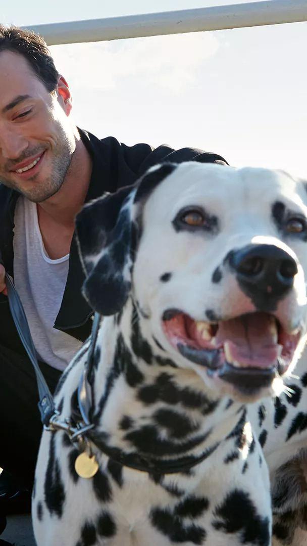 A man and a dog in sunshine