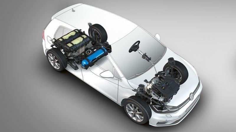 Rappresentazione schematica del motore TGI di VW Golf