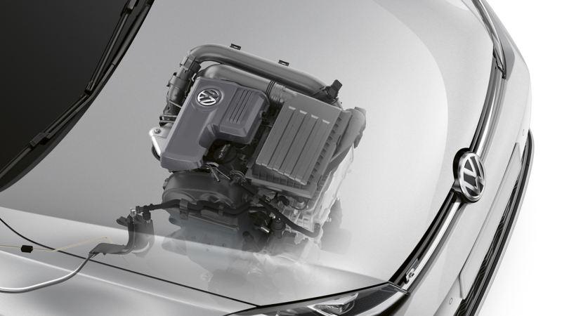 Raffigurazione del contenitore per l'olio all'interno del motore di un veicolo Volkswagen.