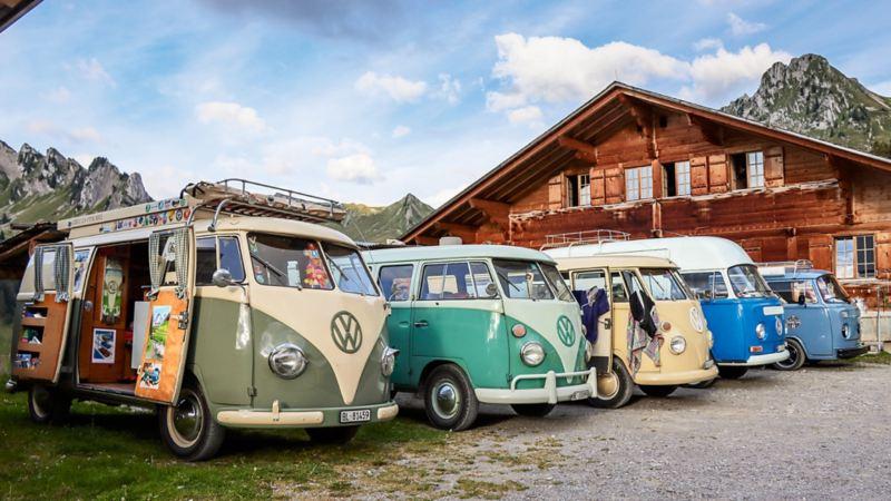 Una fila ordinata: i Bulli e i loro proprietari hanno trascorso la prima notte sull'Alpe Morgeten nell'Oberland bernese.