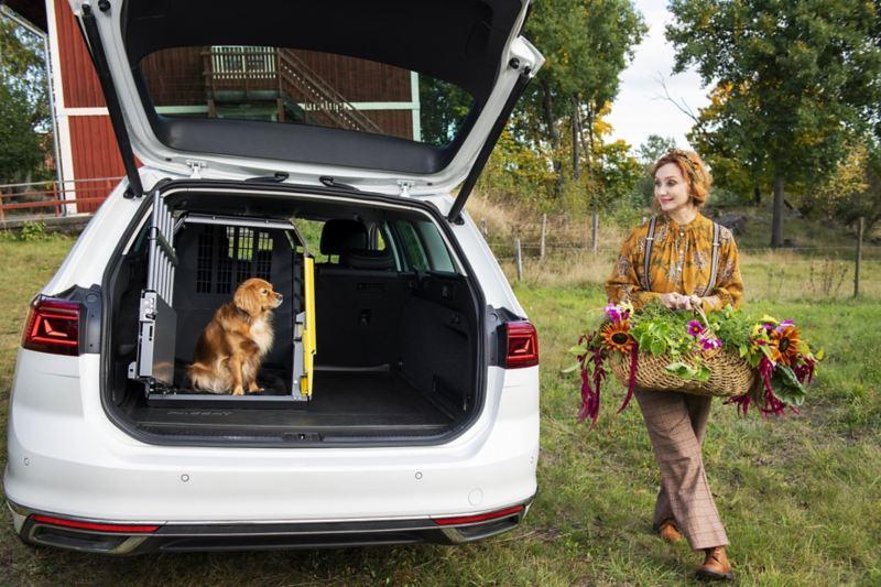 Hunden Ester vid sin hundbur från Volkswagen