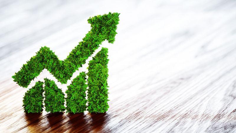 Política Ambiental e de Energia da Volkswagen do Brasil