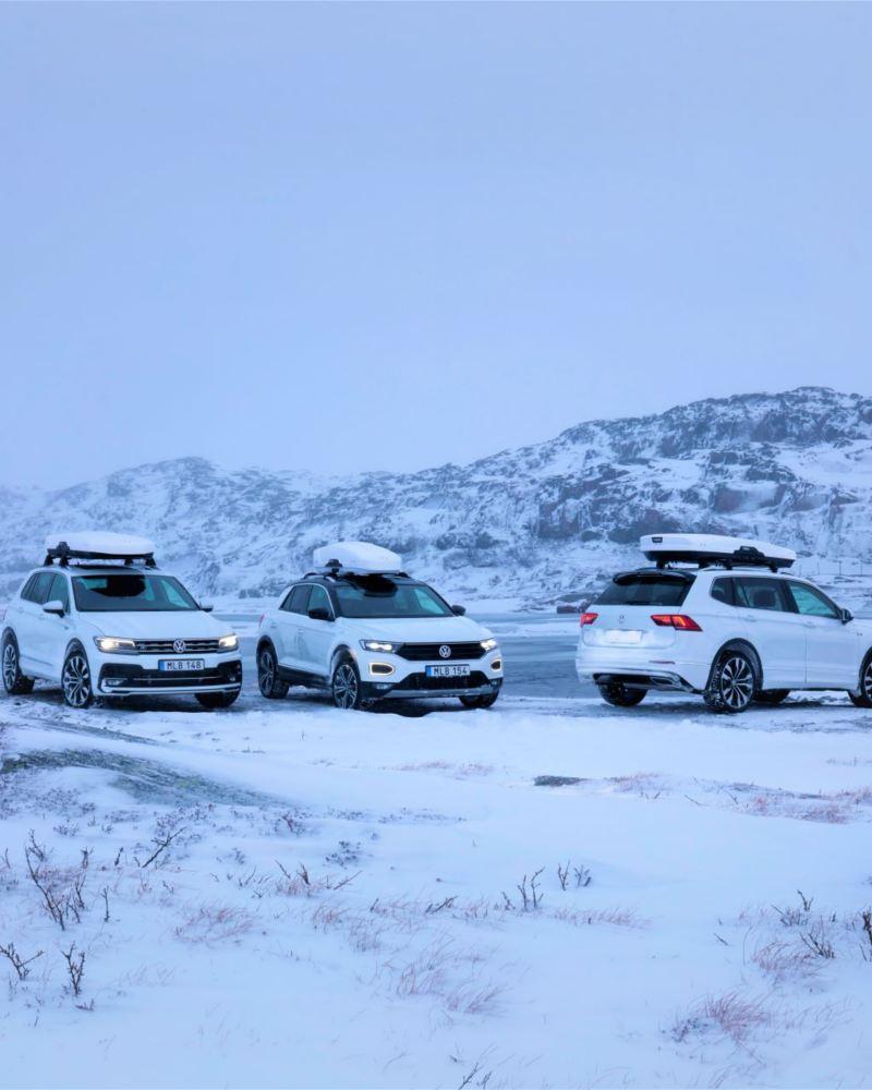 tre Volkswagenbilar i vinterlandskap