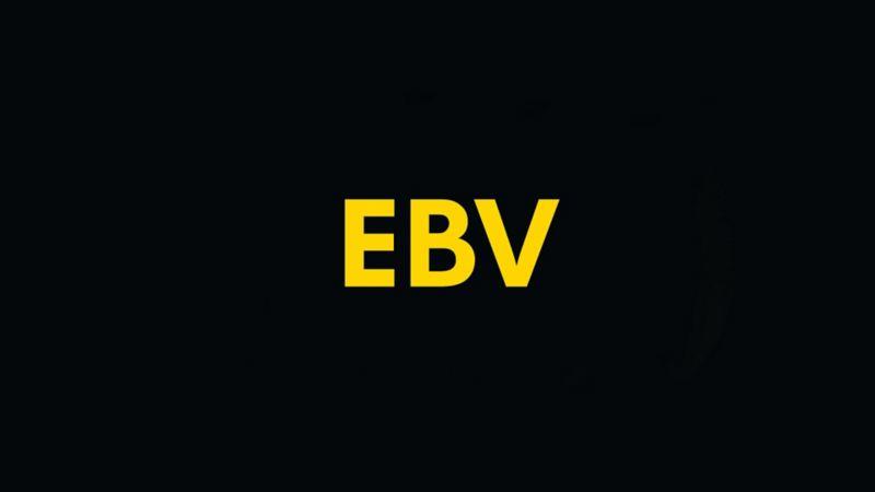 Spie EVB