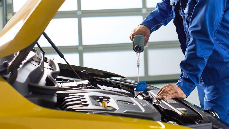 Rabbocco olio Volkswagen Service