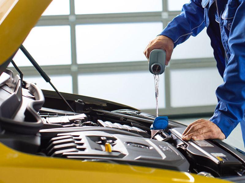 in officina meccanico rabbocca olio in auto Volkswagen con cofano vano motore aperto