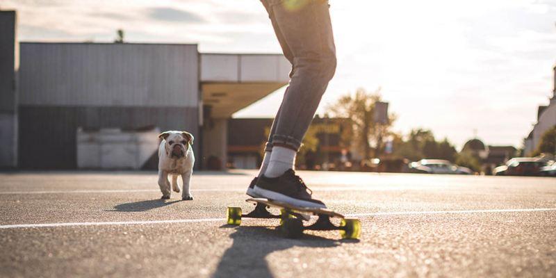Volkswagen Junge Fahrer Versicherung - Skateboard