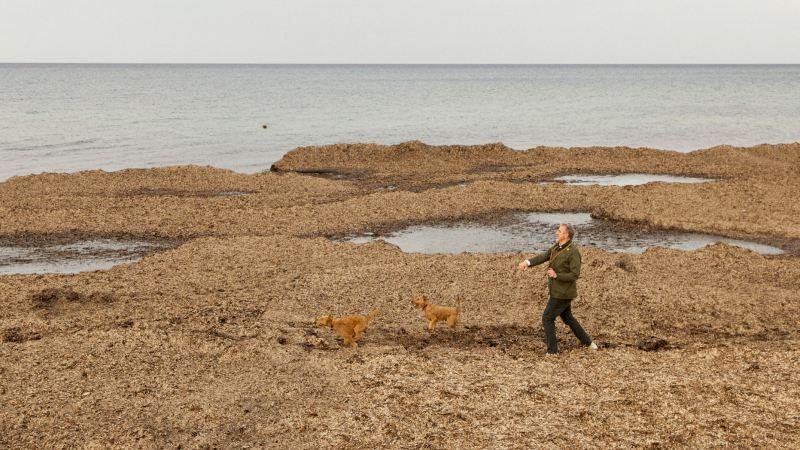 Thomas Niederste-Werbeck au bord de la mer avec ces chiens