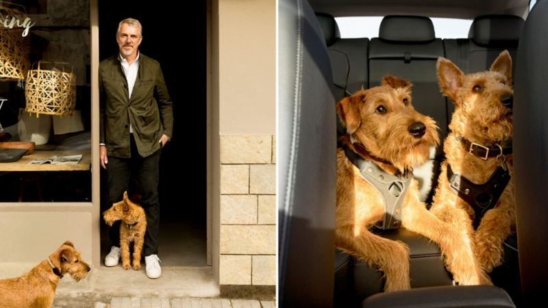 Tiguan en 3 honden