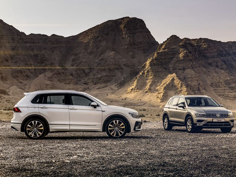 Two Volkswagen Tiguan, one with the R-Line package, parked in front of a mountain in the Middle East